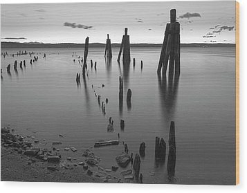 Wooden Soldiers Of The Hudson Monochrome Wood Print