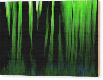 Woodland Abstract Iv Wood Print