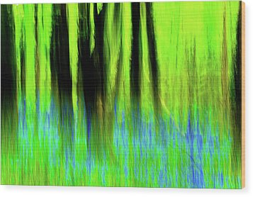Woodland Abstract Vi Wood Print