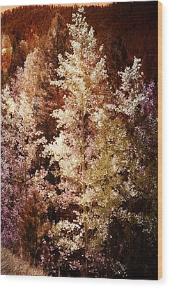 Woodland Beauty Wood Print