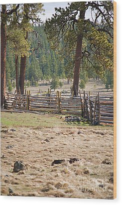 Wood Print featuring the photograph Woodland Corral - White Mountains Arizona by Donna Greene