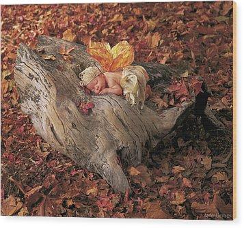 Woodland Fairy Wood Print by Anne Geddes