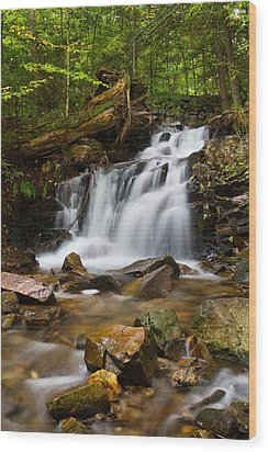 Woodland Falls Wood Print by Mike Farslow
