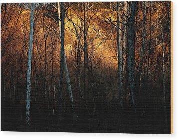 Woodland Illuminated Wood Print by Bruce Patrick Smith