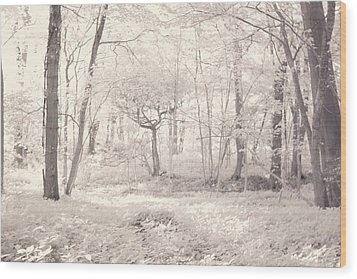Wood Print featuring the photograph Woodland by Keith Elliott