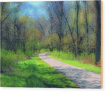 Woodland Trail Wood Print by Cedric Hampton