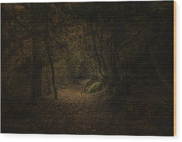 Wood Print featuring the photograph Woodland Walk by Ryan Photography