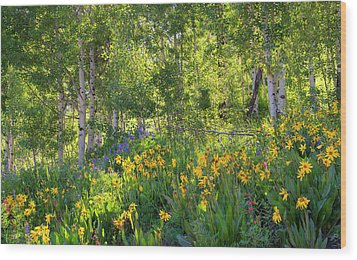 Wood Print featuring the photograph Woodland Wildflowers by Tim Reaves