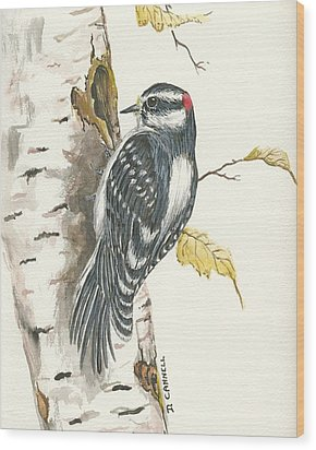Wood Print featuring the painting Woodpecker by Darren Cannell
