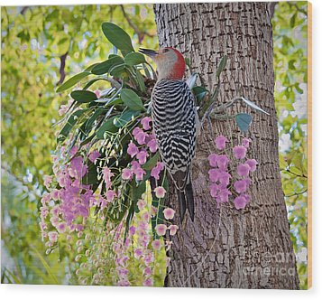 Woodpecker Heaven Wood Print