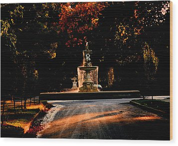 Woodruff Place Fountain  Wood Print by Martin Morehead