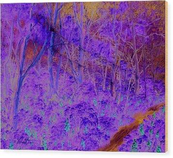 Woods By A Stream Wood Print by Dennis Vebert