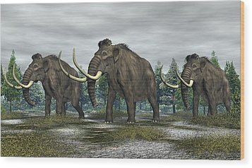 Woolly Mammoth Wood Print by Walter Colvin