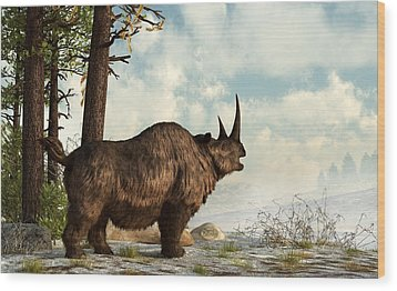 Woolly Rhino Wood Print by Daniel Eskridge