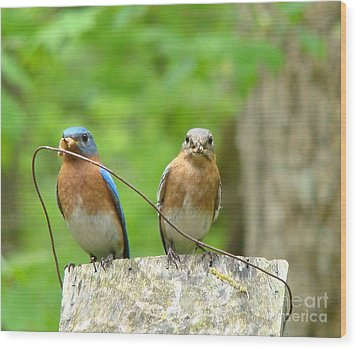 Working Couple Wood Print by Rand Herron