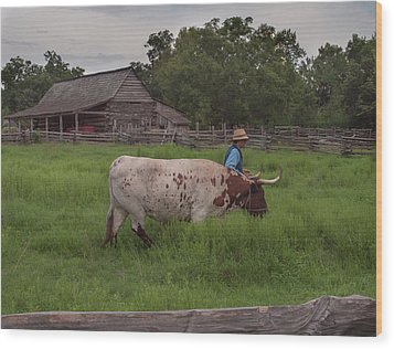 Wood Print featuring the photograph Working Farm Oxen by Joshua House