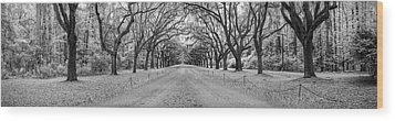 Wood Print featuring the photograph Wormsloe Pathway by Jon Glaser