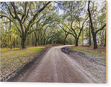 Wood Print featuring the photograph Wormsloe Road by Anthony Baatz