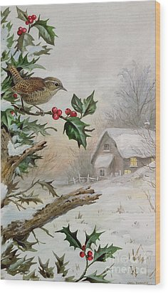 Wren In Hollybush By A Cottage Wood Print by Carl Donner