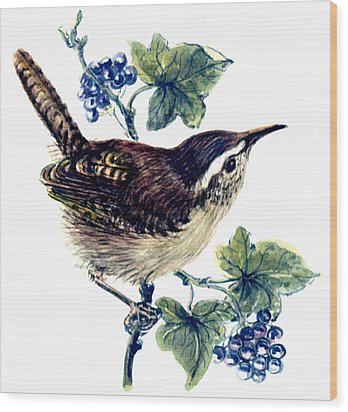 Wren In The Ivy Wood Print by Nell Hill