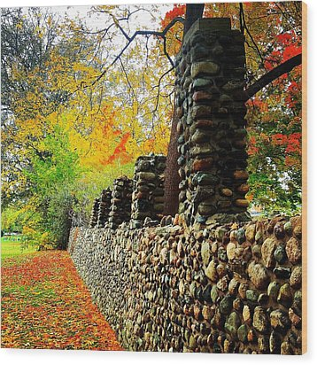 Wright Park Stone Wall In Fall Wood Print