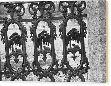 Wrought Iron Gate -west Epping Nh Usa Wood Print by Erin Paul Donovan