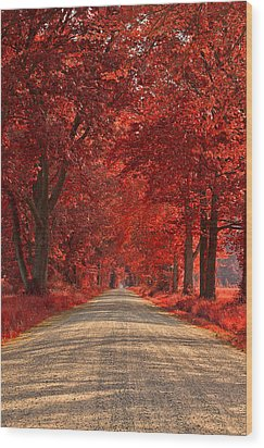 Wye Island Ruby Road Wood Print