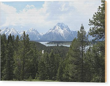 Wyoming 6490 Wood Print