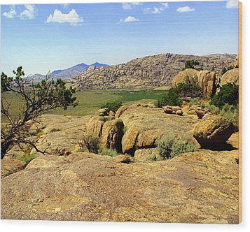 Wyoming Landscape Wood Print by Marty Koch