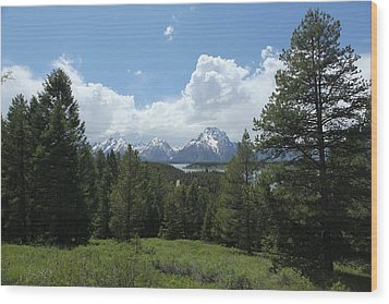 Wyoming 6500 Wood Print