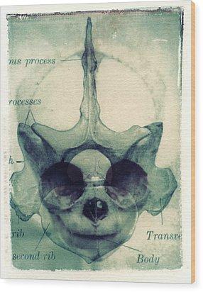 X Ray Terrestrial No. 13 Wood Print by Jane Linders