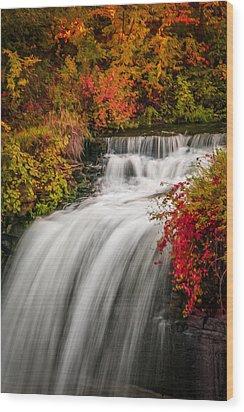 Fall At Minnehaha Falls Wood Print