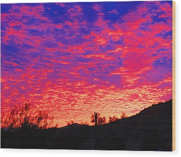 Y Cactus Sunset 1 Wood Print