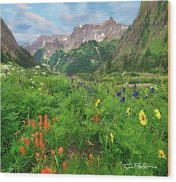 Yankee Boy Basin Wood Print