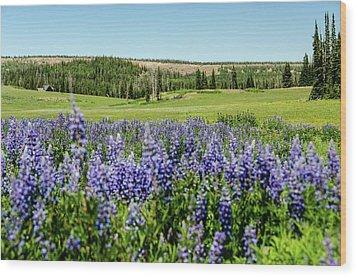 Yard Full Of Wildflowers Wood Print
