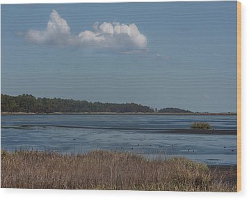 Wood Print featuring the photograph Yawkey Wildlife Reguge - View From The Causeway by Suzanne Gaff