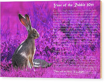 Year Of The Rabbit 2011 . Magenta Wood Print by Wingsdomain Art and Photography