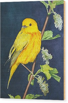 Yelllow Warbler Wood Print by Sharon Farber