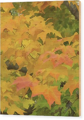 Wood Print featuring the photograph Yellow And Green Fall Leaves by Michael Flood