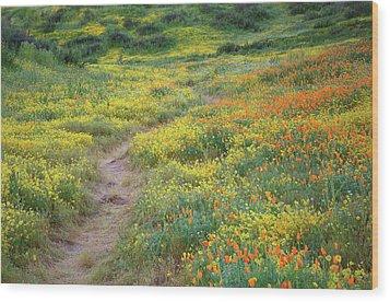Wood Print featuring the photograph Yellow And Orange Wildflowers Along Trail Near Diamond Lake by Jetson Nguyen