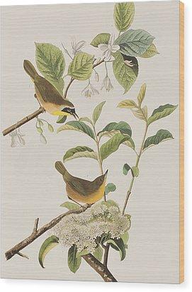 Yellow-breasted Warbler Wood Print by John James Audubon