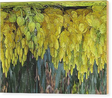 Yellow Buds Wood Print
