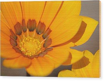 Yellow Burst Wood Print