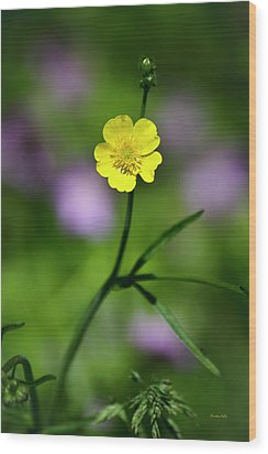 Yellow Buttercup Wood Print by Christina Rollo