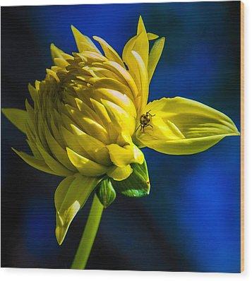Yellow Camo Wood Print