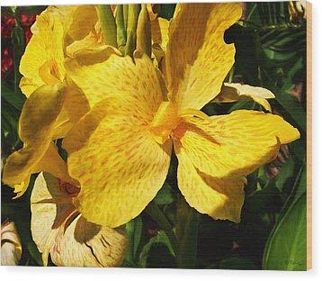 Yellow Canna Lily Wood Print by Shawna Rowe