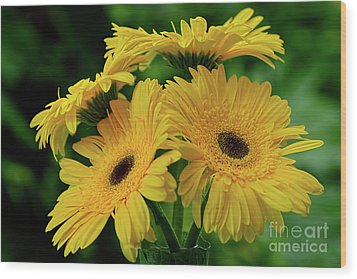 Wood Print featuring the photograph Yellow Chrysanthemums By Kaye Menner by Kaye Menner
