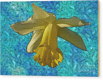 Yellow Daffodil 3 Wood Print by Jean Bernard Roussilhe