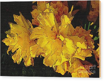 Yellow Daffodils 4 Wood Print by Jean Bernard Roussilhe
