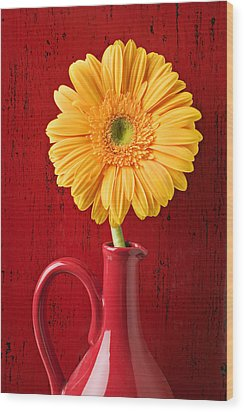 Yellow Daisy In Red Vase Wood Print by Garry Gay
